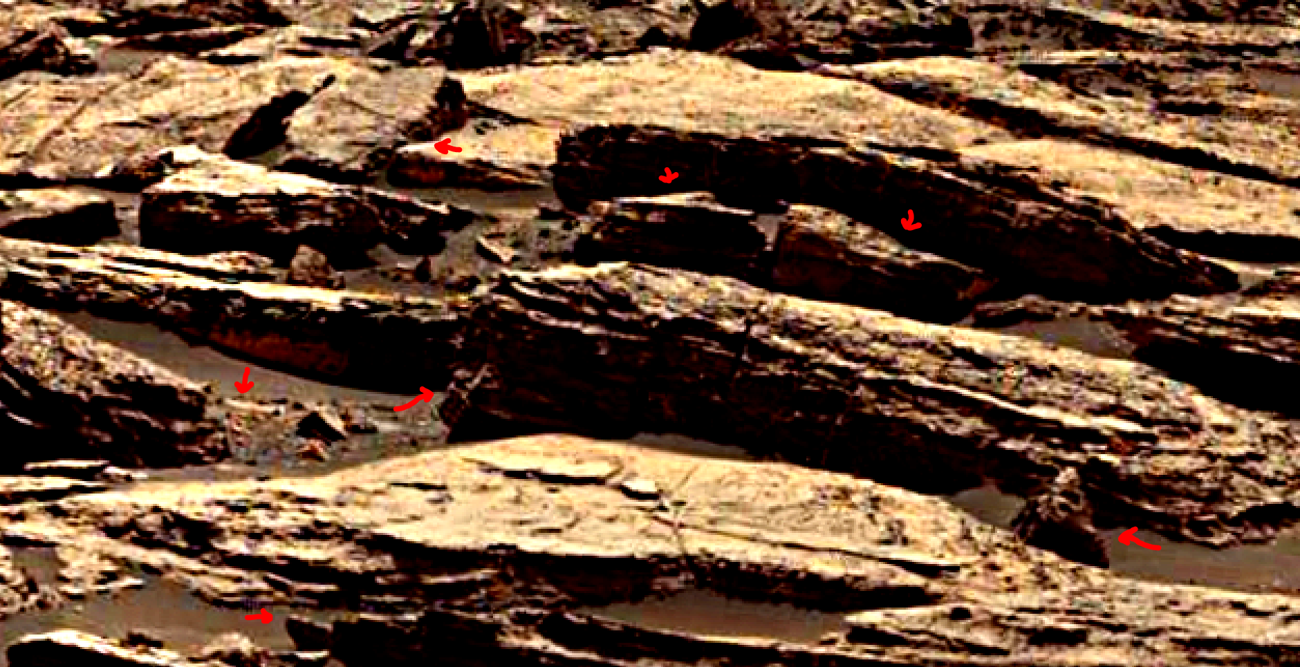 mars-sol-1489-anomaly-artifacts-5-was-life-on-mars