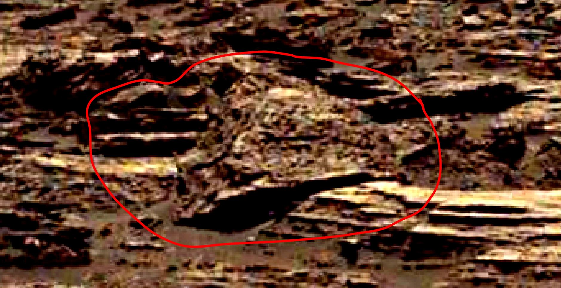 mars-sol-1489-anomaly-artifacts-6-was-life-on-mars