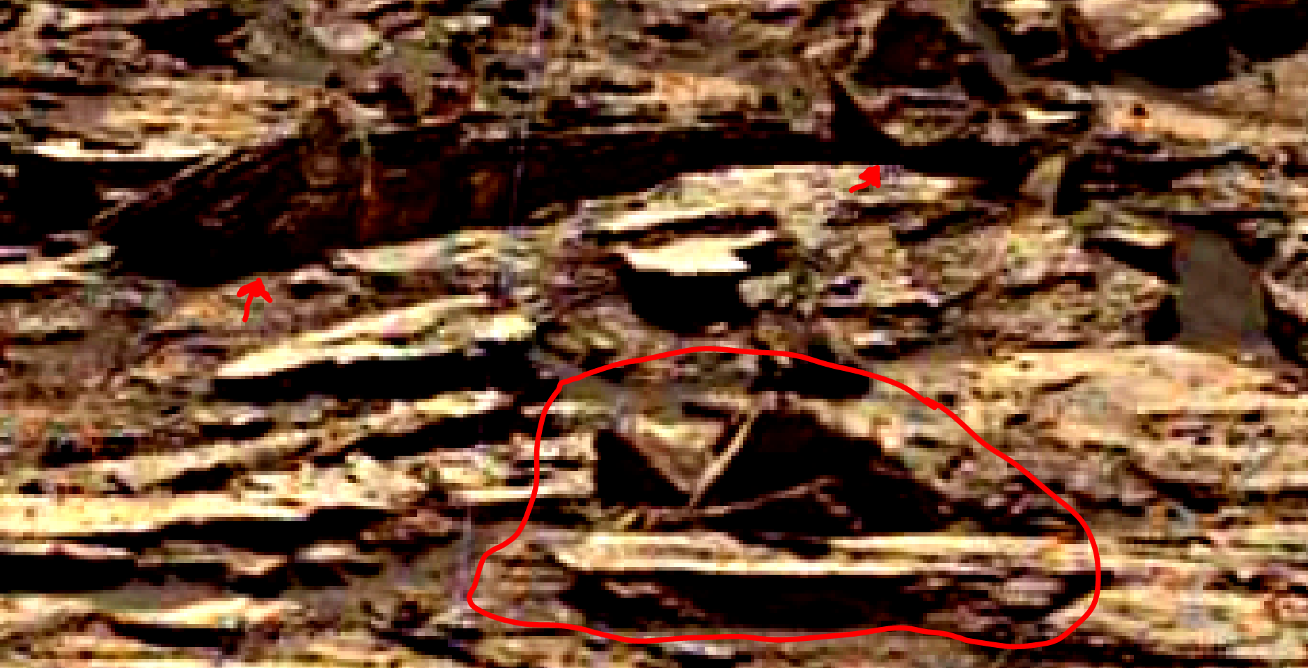 mars-sol-1489-anomaly-artifacts-7-was-life-on-mars