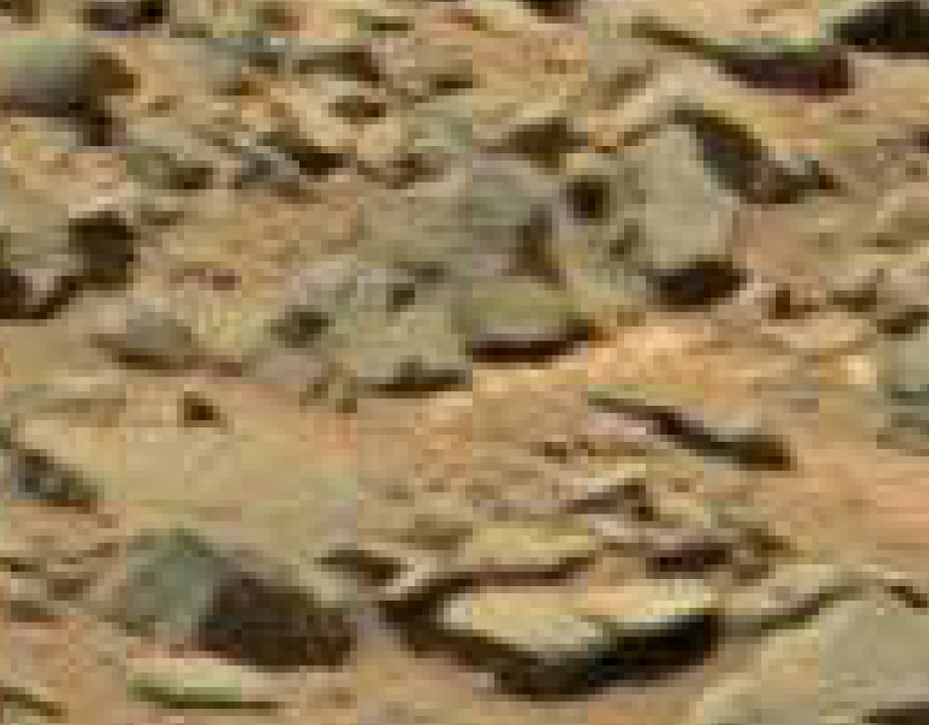mars-sol-710-gale-crater-fish-stone-zoomed